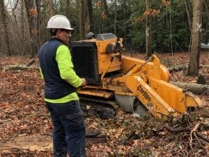 stump removal technician in NY
