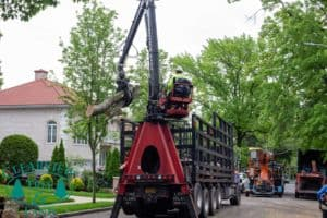 Tree Removal Equipment in NY