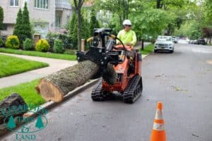 tree log removal equipment worker